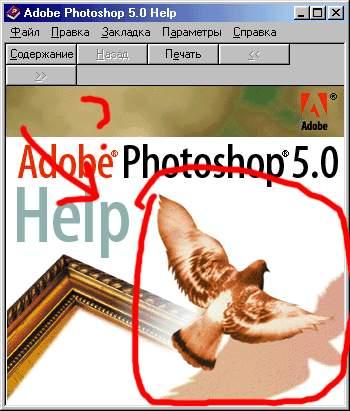 post-77-1086341370.jpg